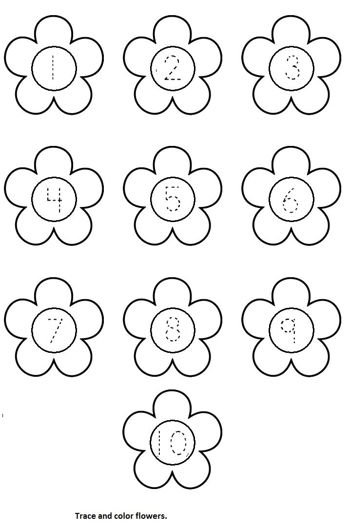 Printable Flower Worksheets