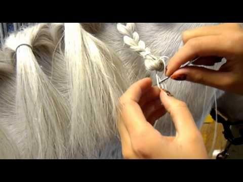 Knotjes maken bij een paard, met naald en draad