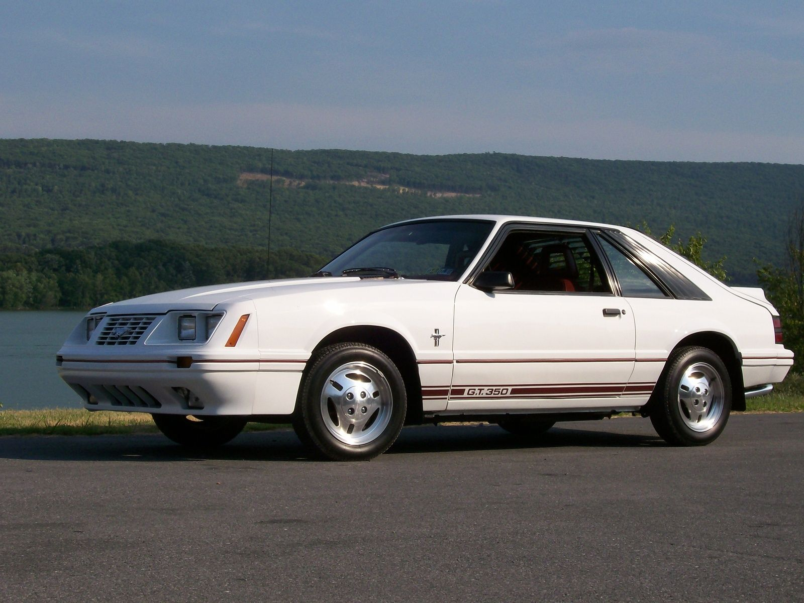 Picture of 1984 ford mustang gt350 exterior - 1984 Ford Mustang Gt350 Ford Mustangs Pinterest Ford Mustang Ford And Hatchbacks