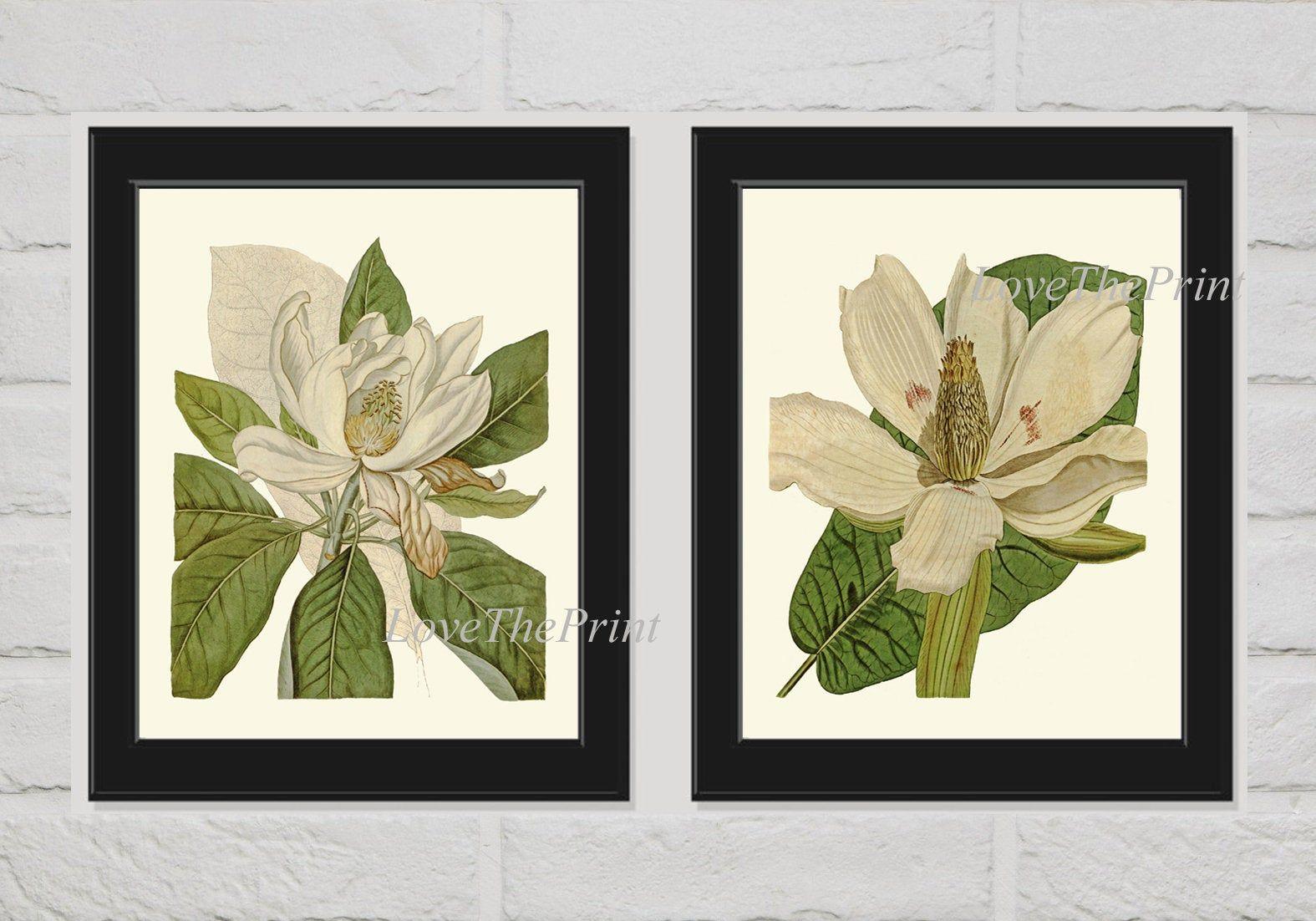 Magnolia Flower Print 11x14 Watercolor White Flower Painting 8x10 Floral Decor Botanical Art Wall Decor 4x6 5x7 Print,