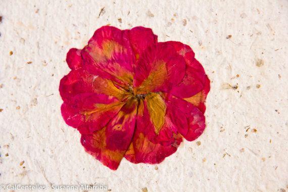 5 Tarjetas hechas con papel reciclado y material vegetal, acabadas - flores secas