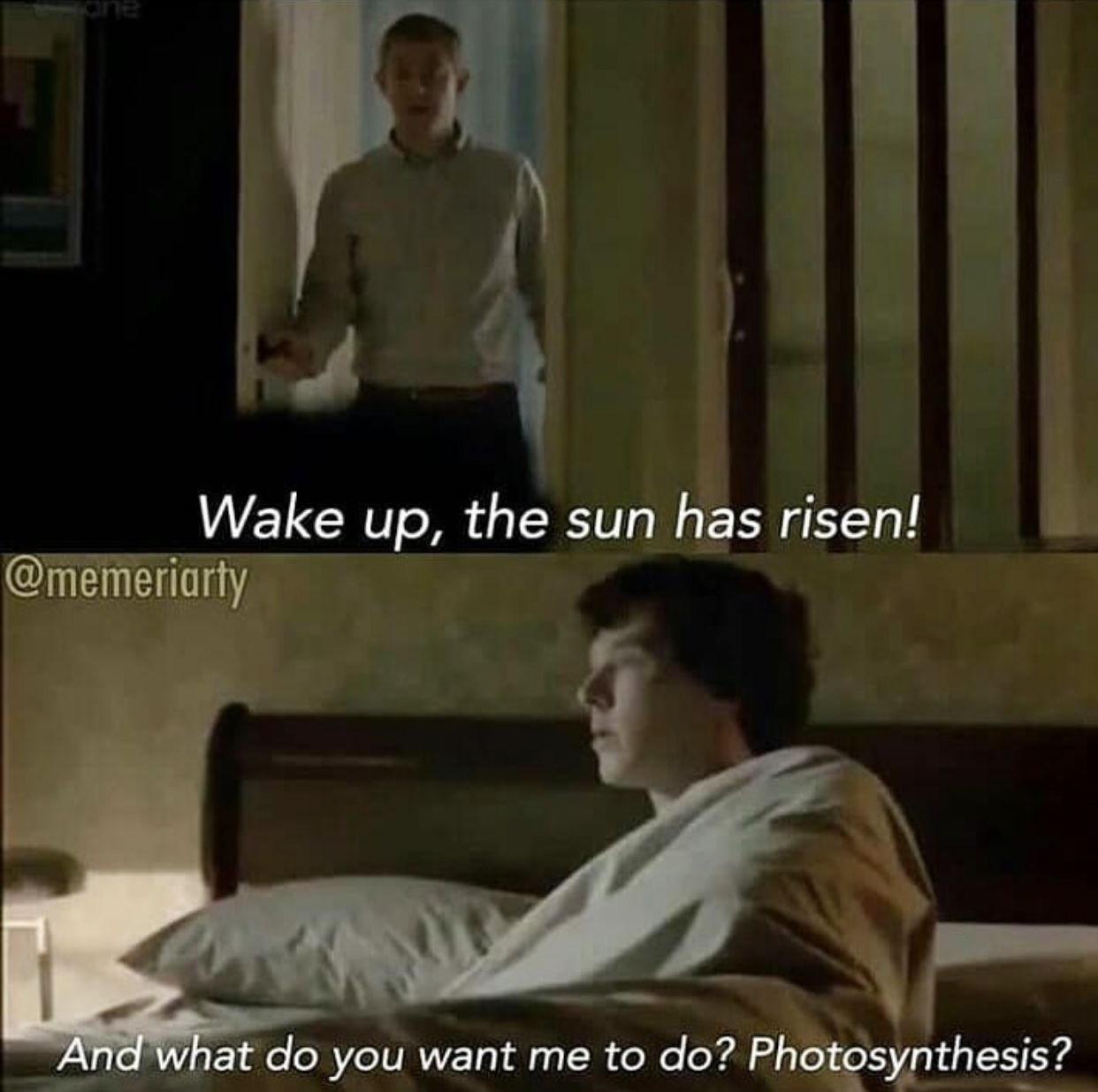 I think this is hilarious because no one says the sun has risen