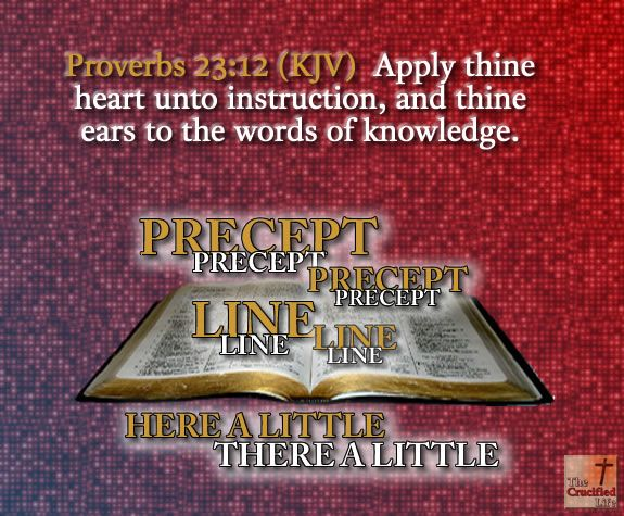 Image result for apply thine heart unto instruction