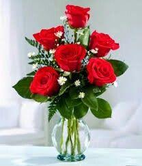 Solamente.Rosas