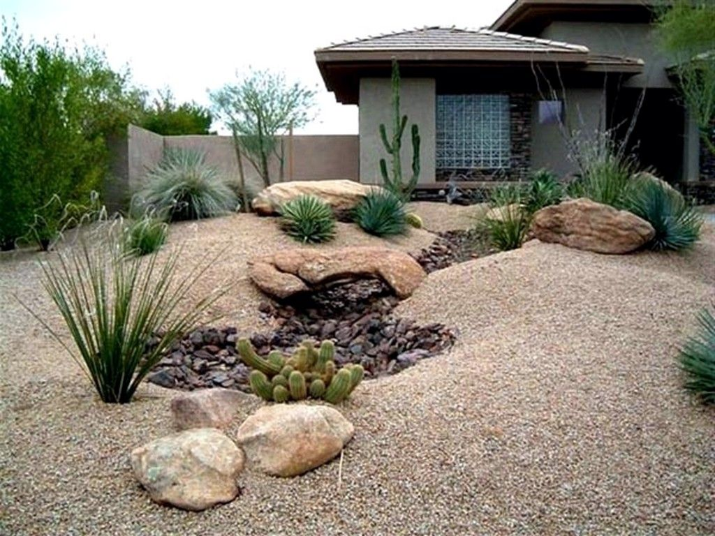 Desert landscape front yard desert for Pictures of front yard landscape design