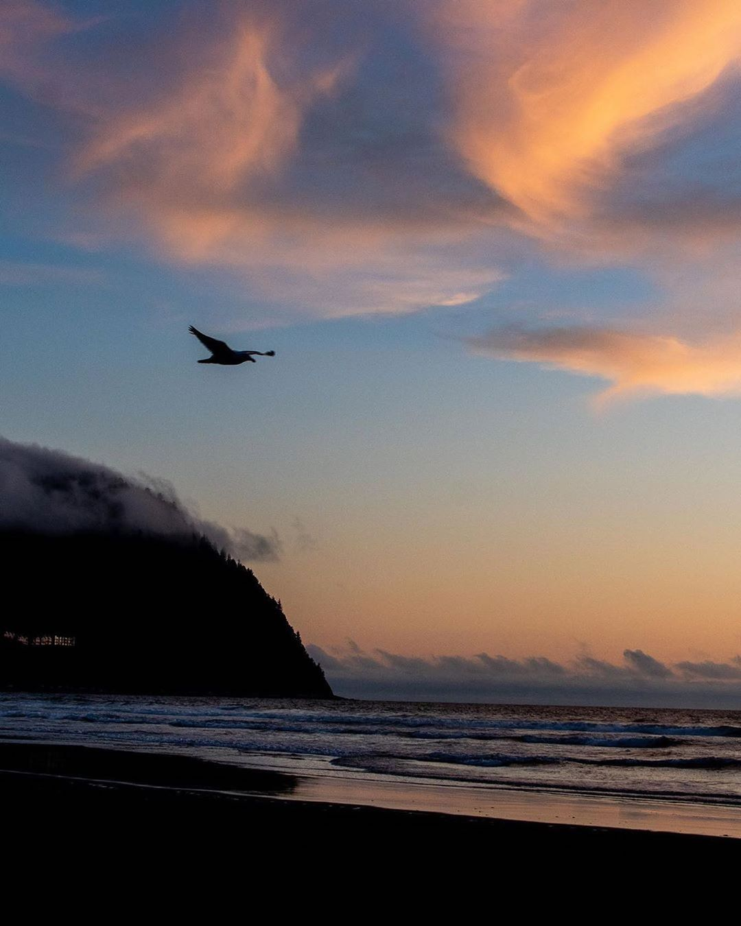 "Visit Seaside Oregon on Instagram: ""Soaring amongst the soft clouds and sunsetting skies of Seaside. . . . 📷 @jonahplymale #SeasideOregon #OregonCoast #TravelOregon…"""