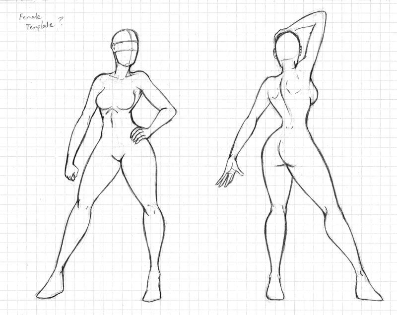 Female Template Sample Outline Art Figure Drawing Illustrator Tutorials