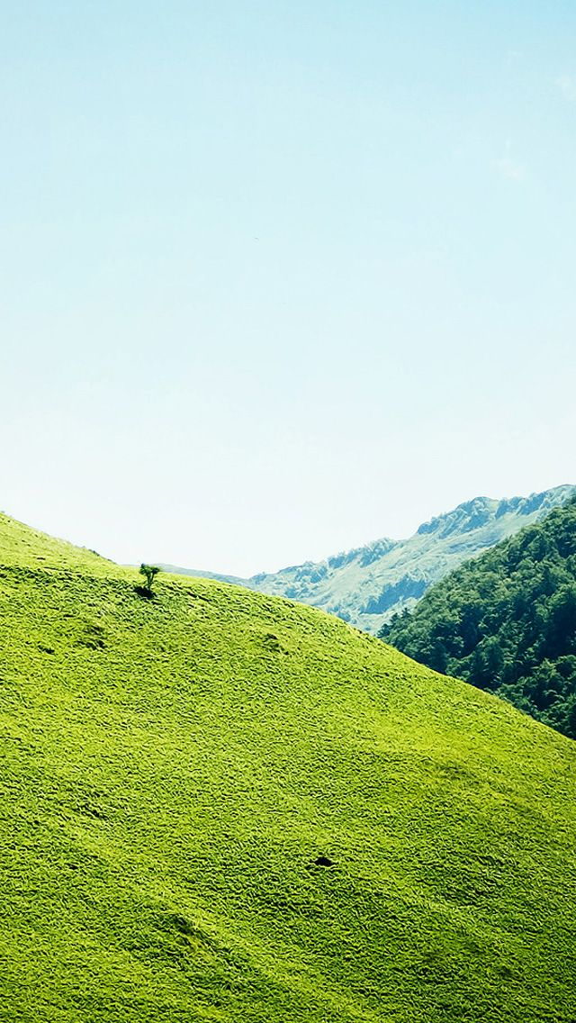 Iphone 5 Wallpapers Hd Green Mountains And Scenery Backgrounds Scenery Natural Scenery Green Mountain