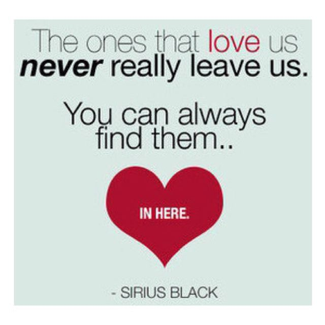 Love Quotes From Harry Potter Gotta Love Harry Potter Quotes 3  Words  Pinterest  Harry Potter