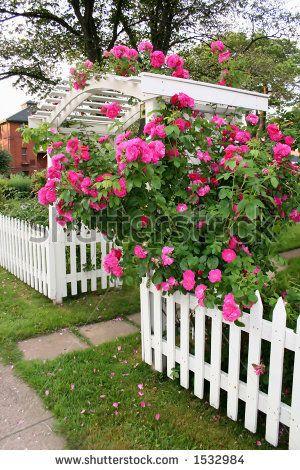 Barrière blanche fleurie | jardin | Pinterest | Country fences ...