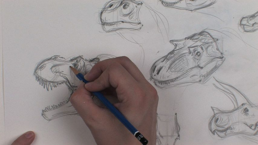 The Gnomon Workshop - Dinosaur Drawing: Anatomy and Sketching ...