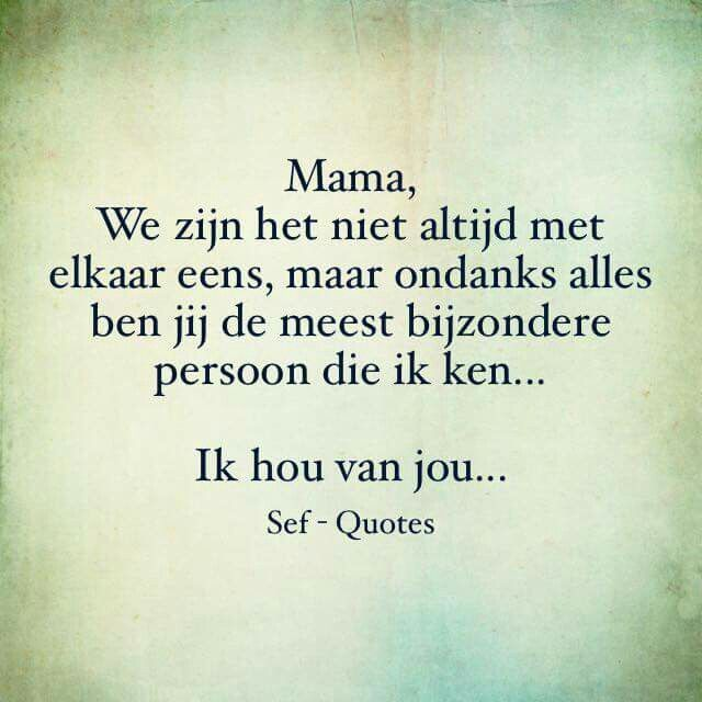 Bekende Citaten Politiek : Sef quotes qoutes pinterest dutch