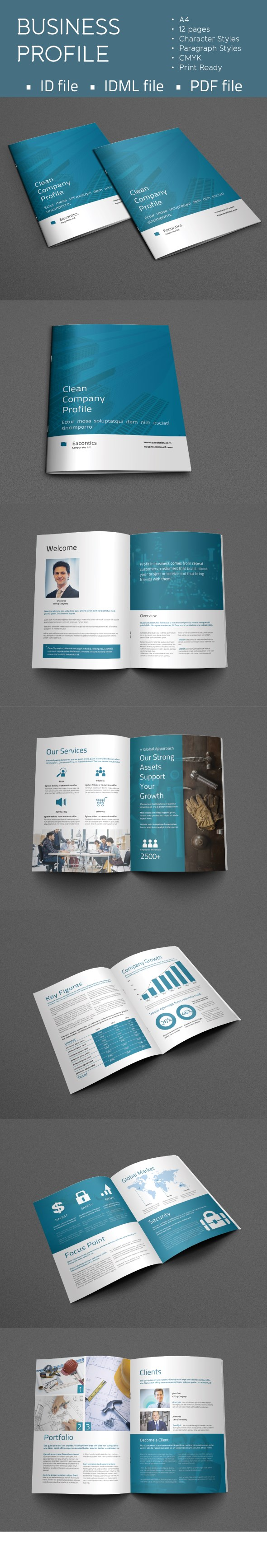 Professional  Corporate Indesign Business Template That Can Be