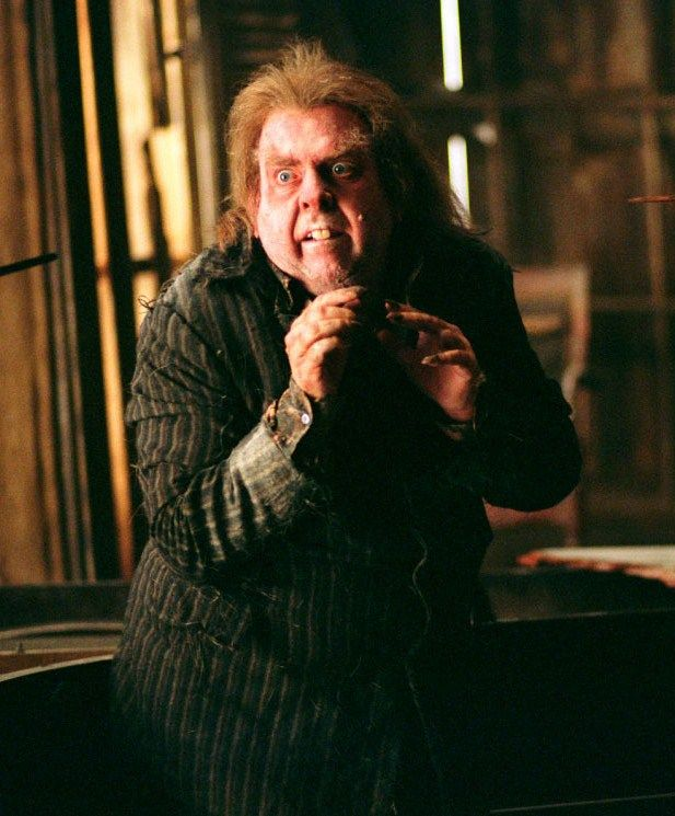 Timothy Spall As Peter Pettigrew Peter Pettigrew Harry Potter Harry Potter Characters Harry Potter Film