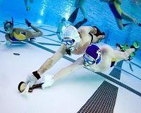 Underwater Hockey Underwater Hockey Team Goals