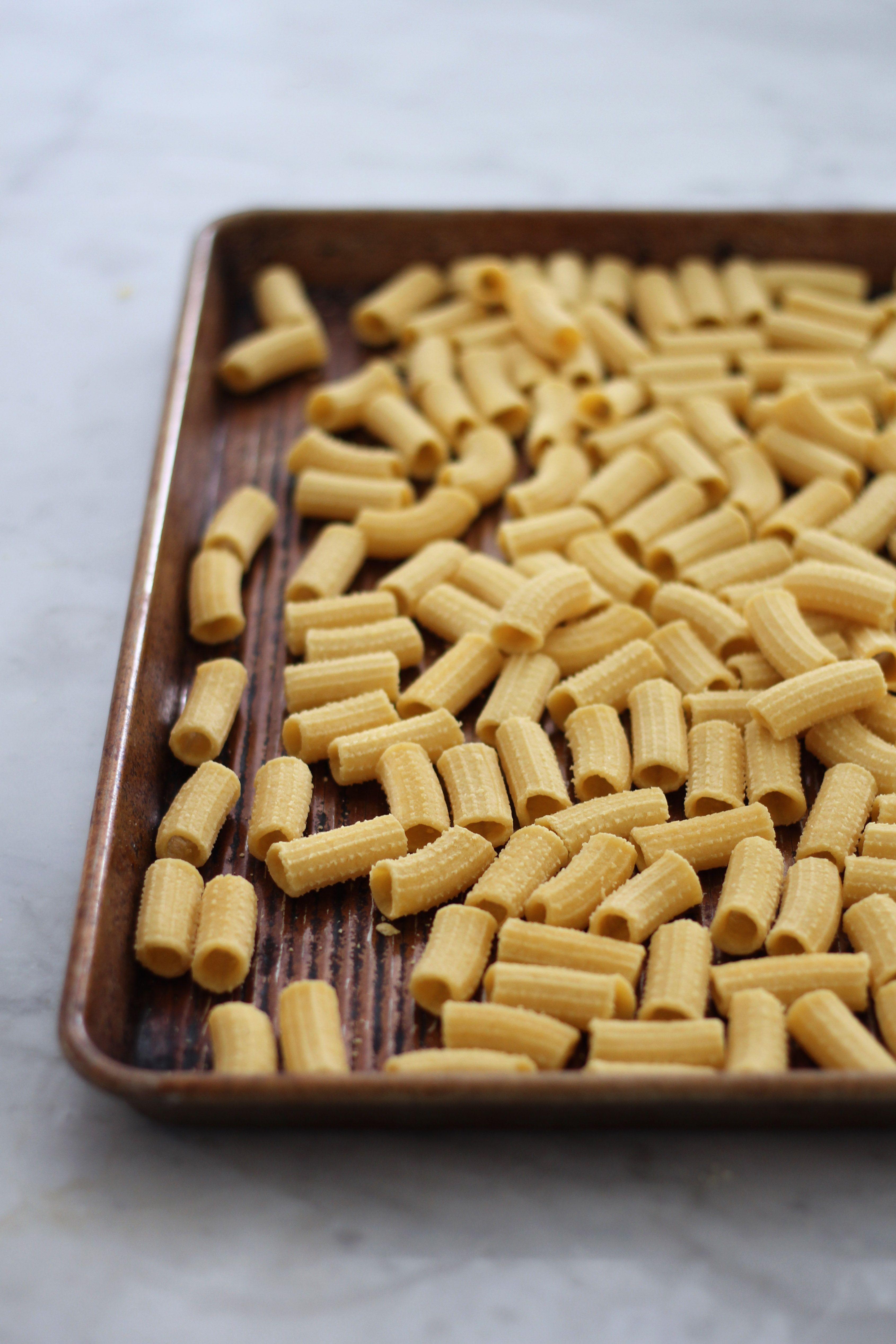 Fresh pasta dough recipe fresh pasta dough fresh