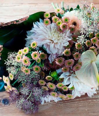 El blog de Los Peñotes: Crisantemos: la flor de la suerte y la salud.