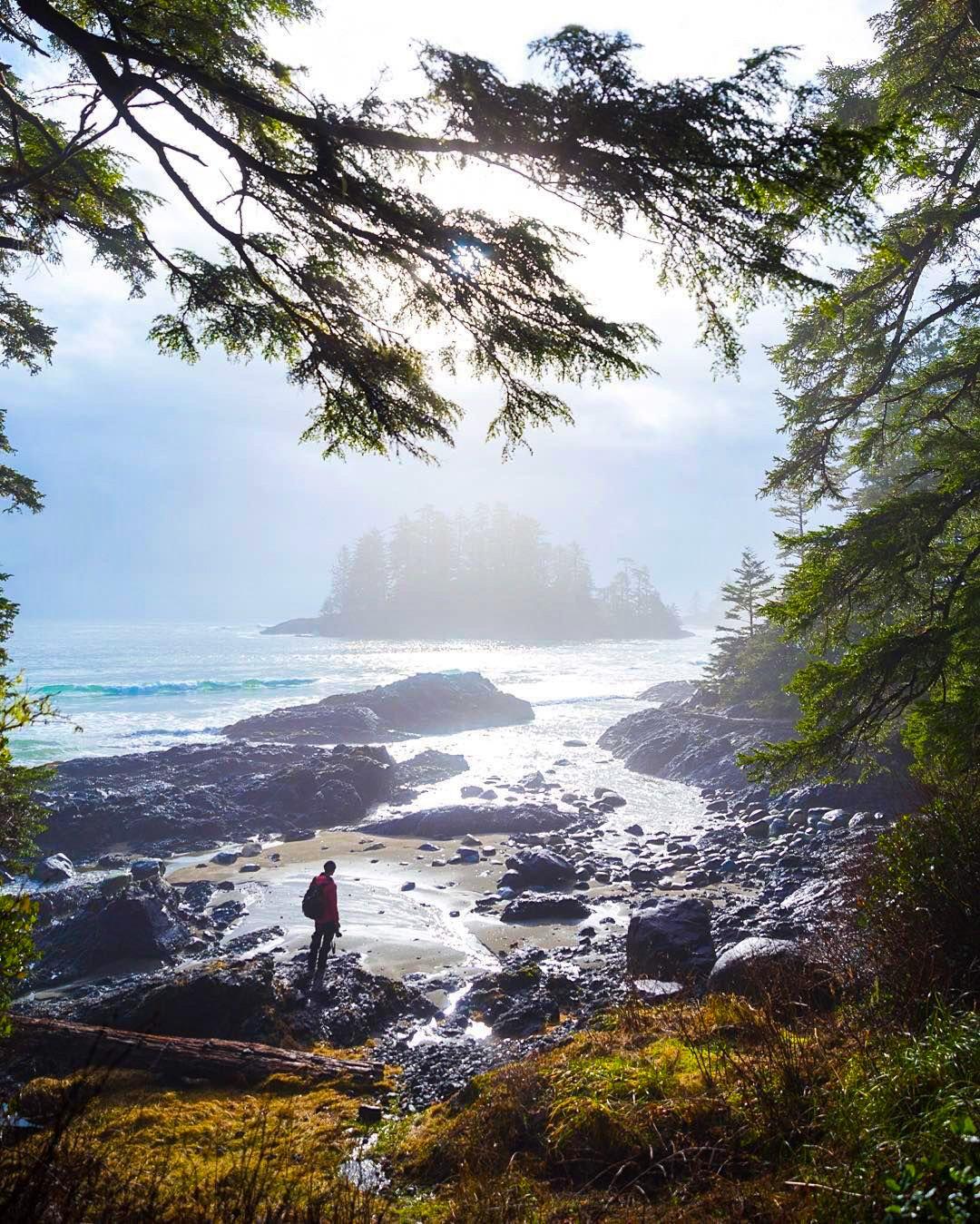 путешествие остров ванкувер фотографии них веет теплом