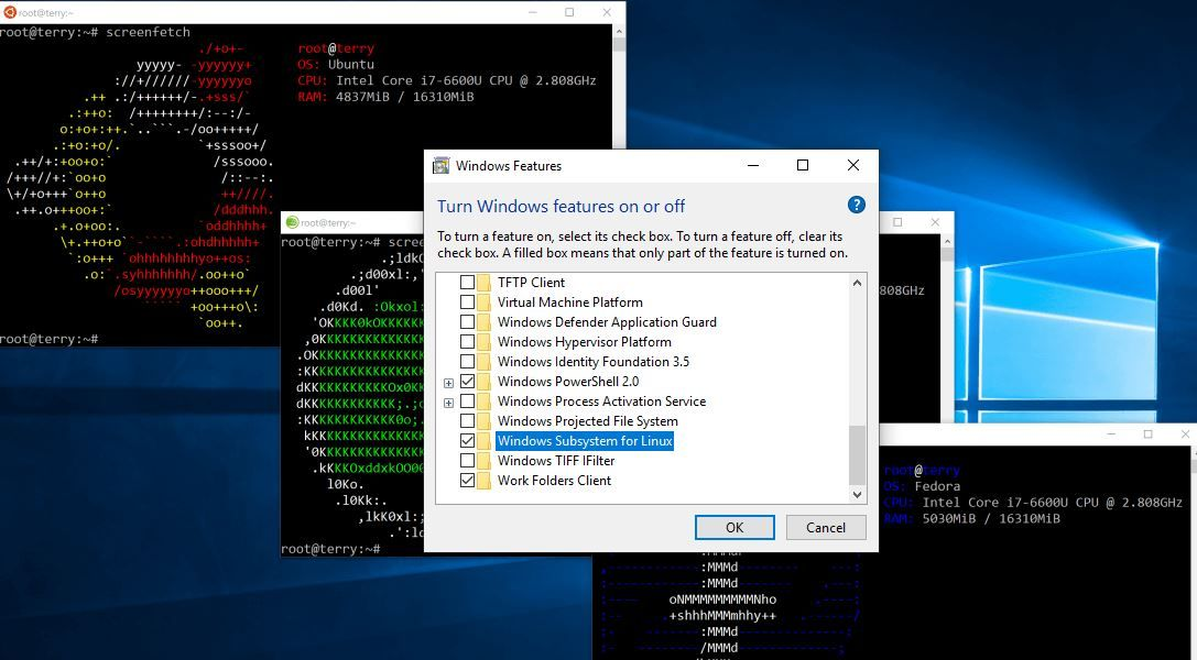 cfd647a679ed0ba6aaf4bdc1adc49c96 - How To Get Rid Of Linux And Install Windows