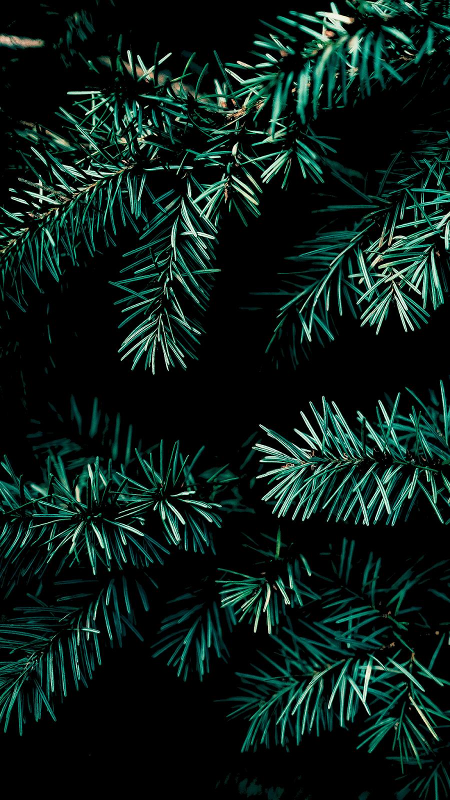 Christmas Vibe For Amoled Display Beautiful Wallpaper Iphone