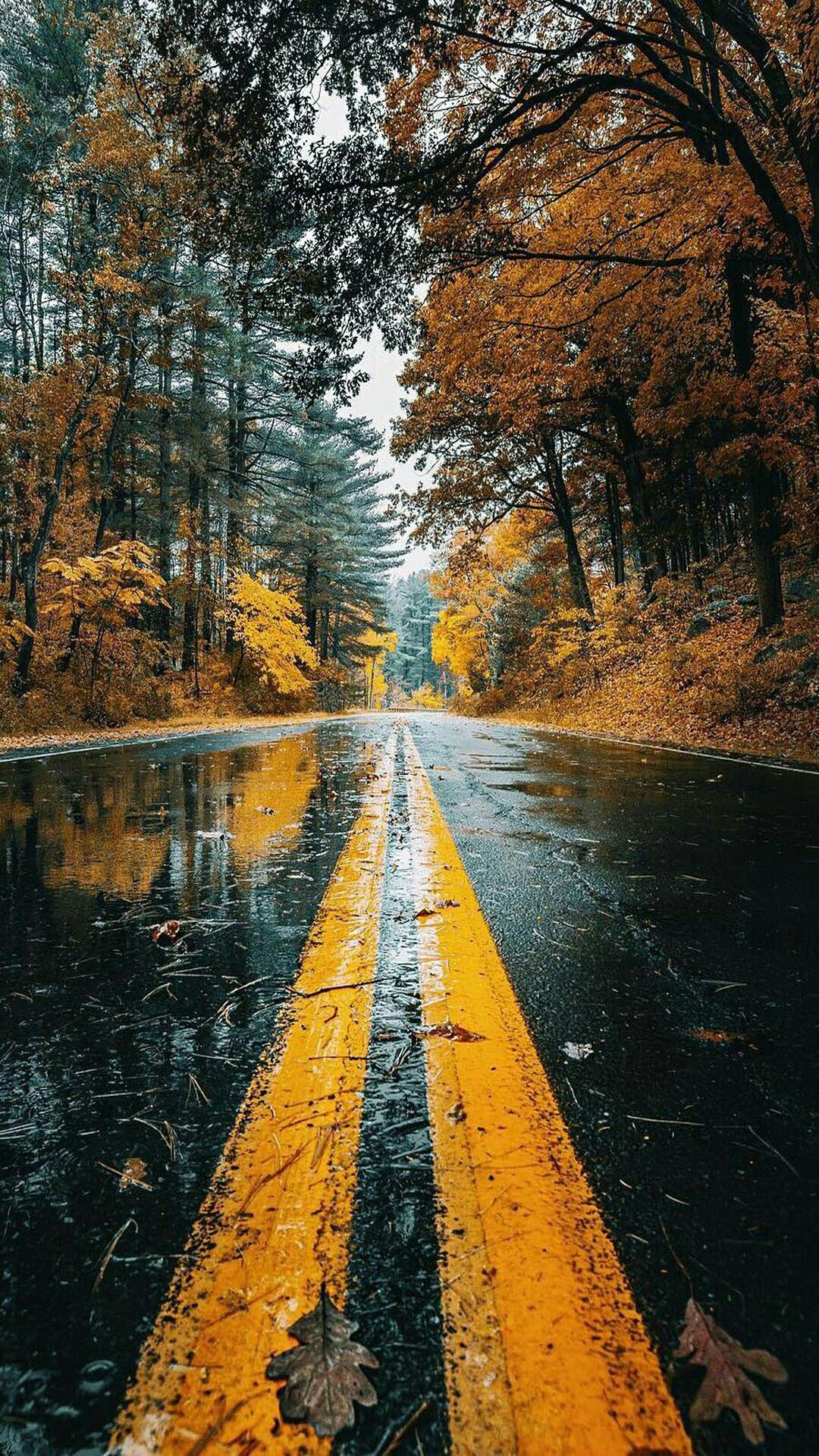 Amazing road beauty Wallpaper 4k | Fotos de fondo de ...