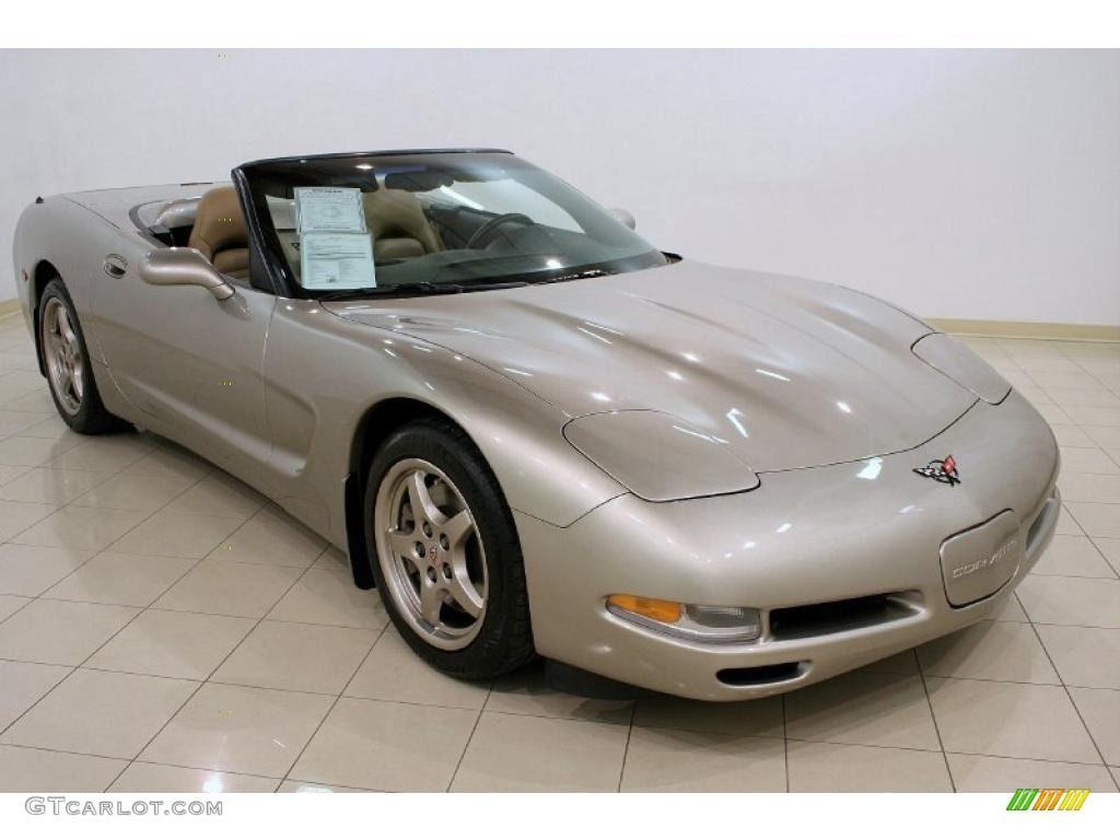 1999 Corvette Convertible - Light Pewter Metallic / Light Oak photo #1