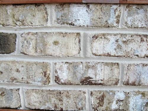 Statesville Brick Company Sherwood Forest Tumbled