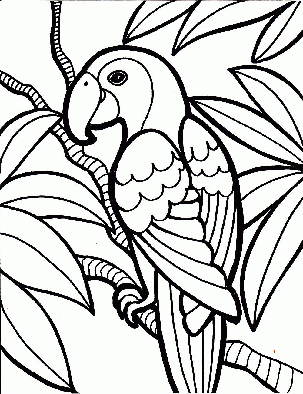 coloring pages 1 05 Jungle coloring pages, Bird coloring