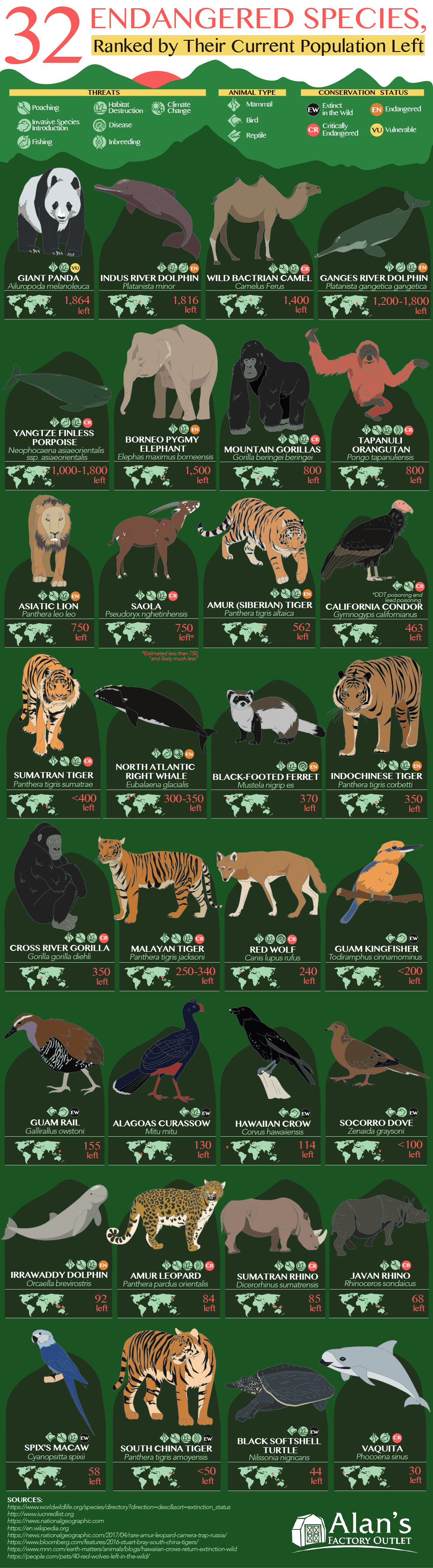 32 Endangered Species Ranked By Their Current Population Left Infographic Threats Anim In 2020 Endangered Animals Infographic Endangered Species Animal Infographic