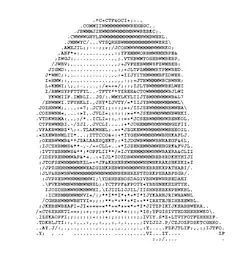 Ascii art Status and Text messages.