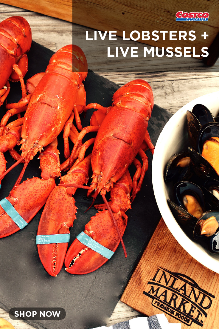 Live Lobsters 1 25 Lbs Each 4 Count And 2 Lbs Of Live Mussels Live Lobster Mussels Seafood Delivery