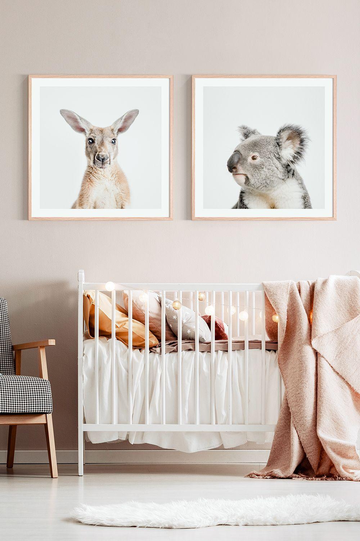 framed nursery prints on kangaroo koala nursery wall art prints australian animal photographic posters or framed prints koala nursery australian nursery nursery art prints pinterest