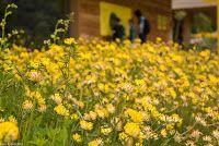 Naturzentrum Thurauen: Ab in die Thurauen!