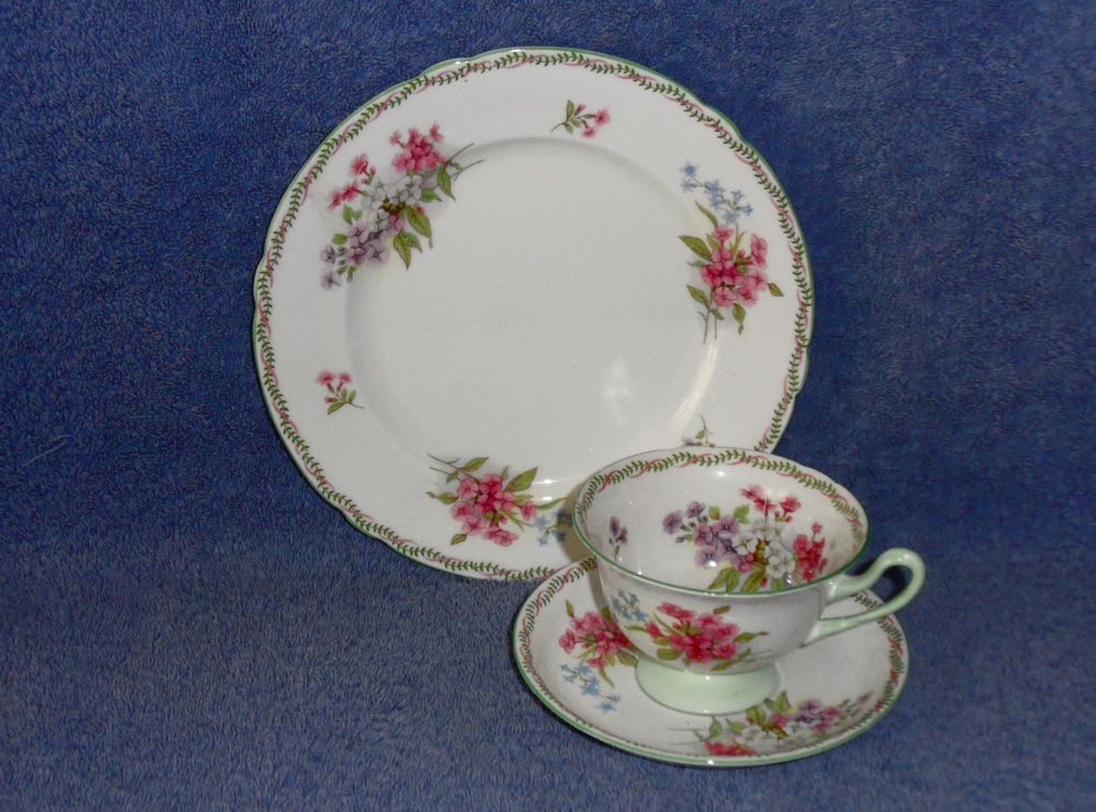Gorgeous SHELLEY China STOCKS Pattern GAINSBOROUGH Shape CUP SAUCER & PLATE TRIO