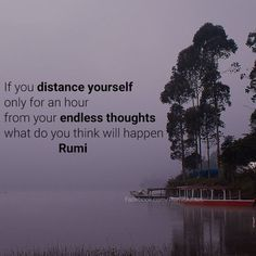 Rumi Quote's   Rumi Quotes Collection  Table For Change