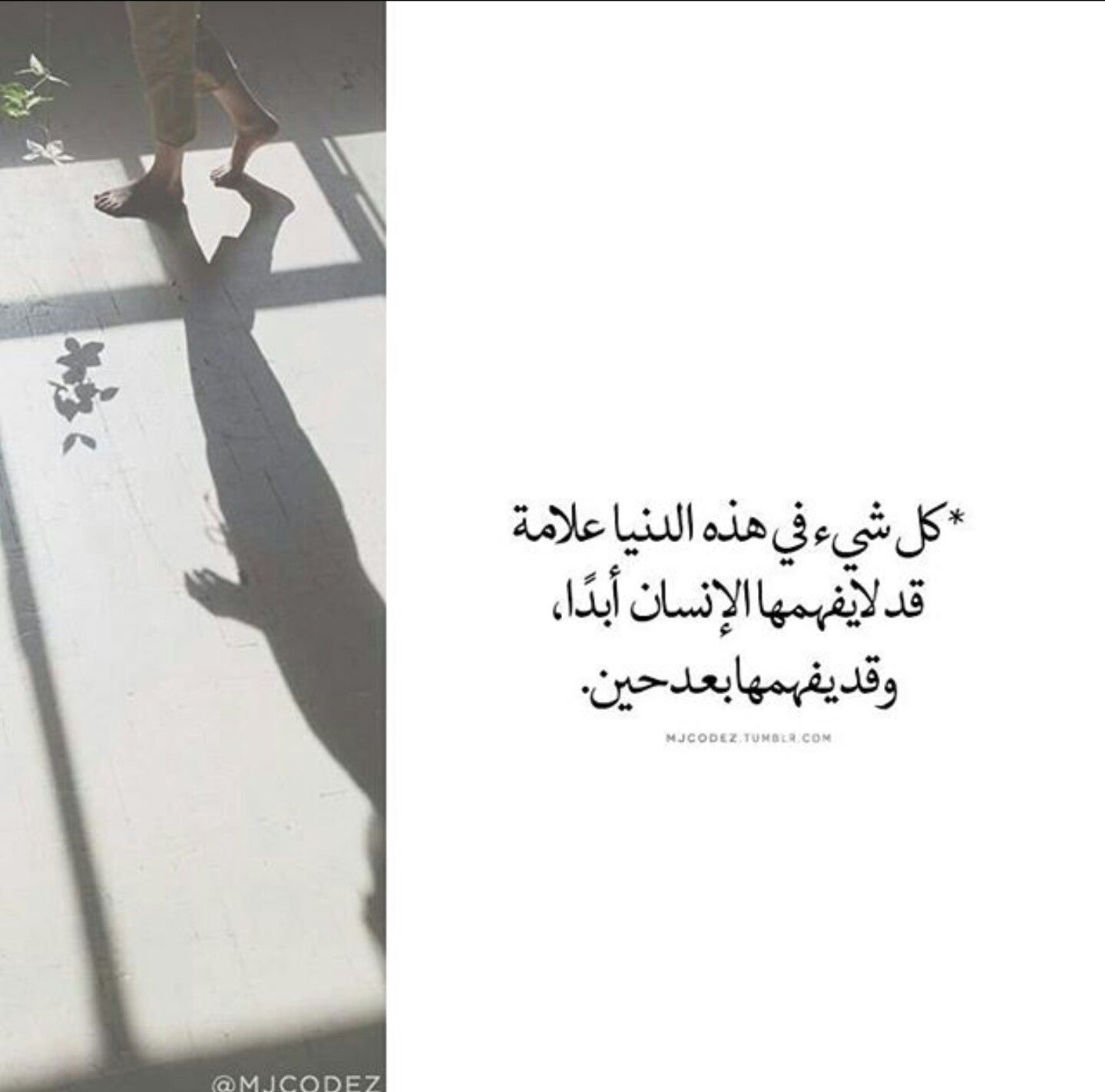 Pin by G . S on كلمه من الاخر (With images) Cool words