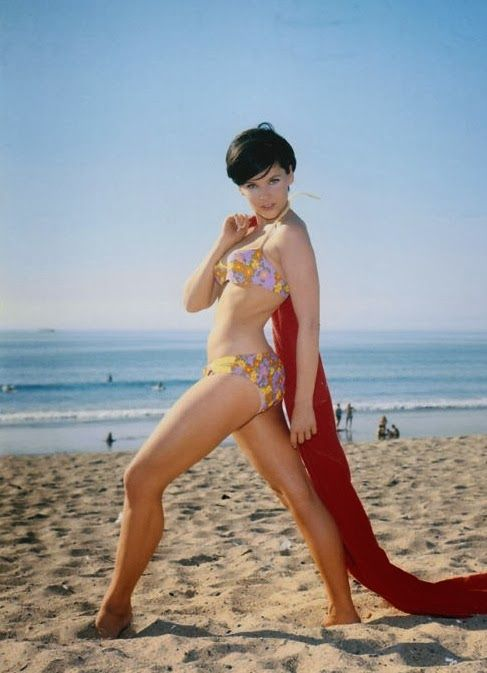 yvonne craig net worth