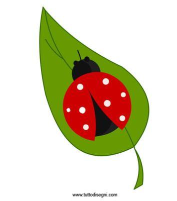 foglia-coccinella