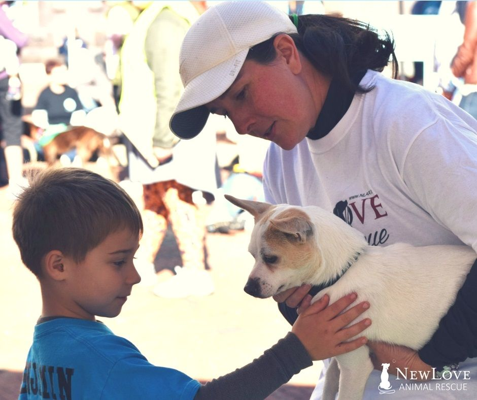 VOLUNTEER NEW LOVE Our mission would not be possible
