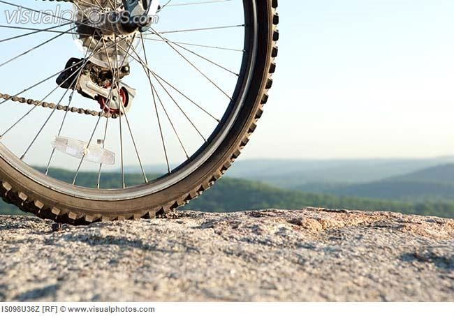 bike wheel closeup - Google 검색