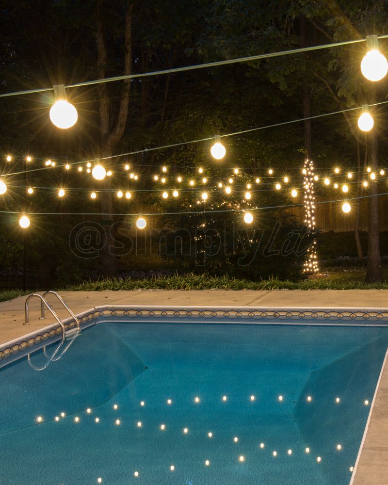 Warm White G50 Led Cafe Lights Also Known As Market
