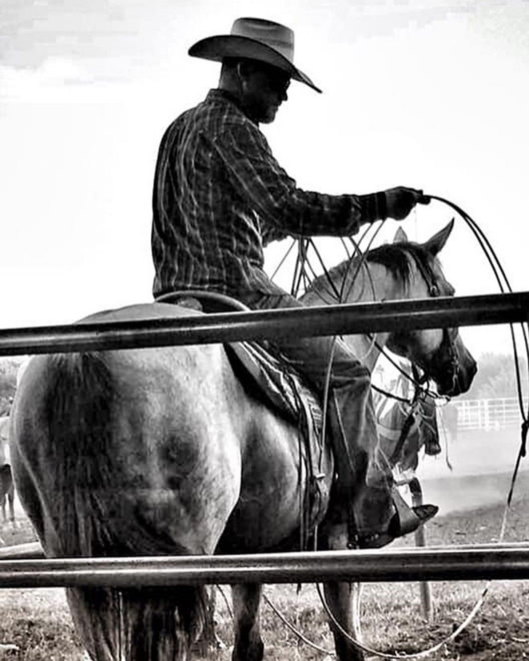 Pin by Jennifer Amos on country My buddy, Horses