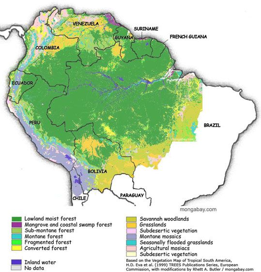 The Amazon Rainforest Is Located In The Upper Section Of Brazil