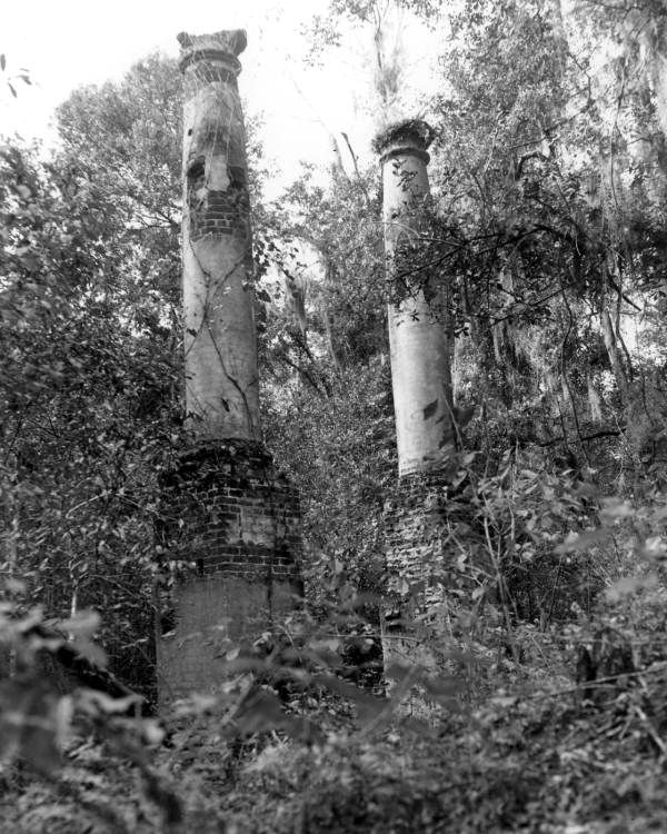 Vine covered column ruins of verdura plantation for Plantation columns
