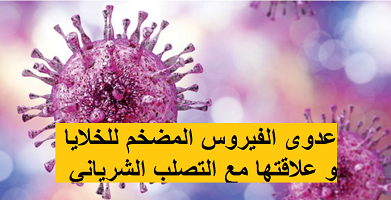 عدوى الفيروس المضخم للخلايا و علاقتها مع التصلب الشرياني