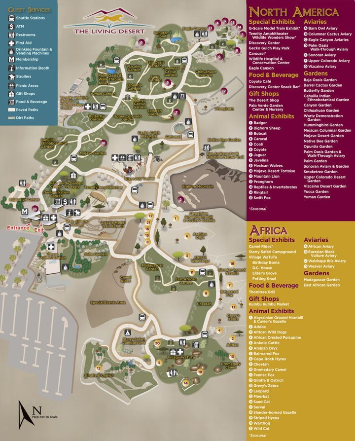 Desert Hot Springs California Map.Things To Do And See Interactive Map The Living Desert Near