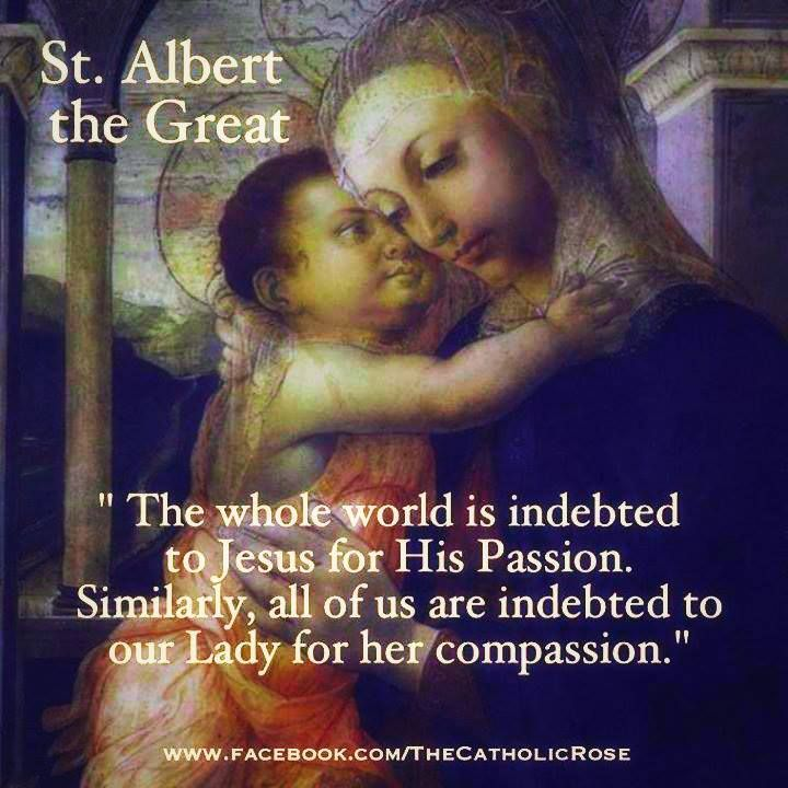 St Albert The Great 3 New Evangelization Holy Quotes Catholic