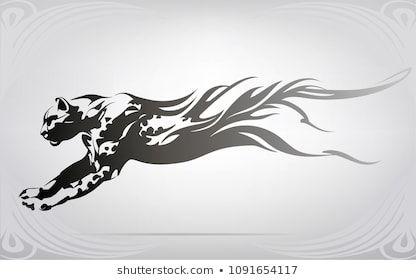 nutriaaa s photographer illustrator vector artist videographer portfolio shutterstock cheetah tattoo black cat tattoos tiger art pinterest