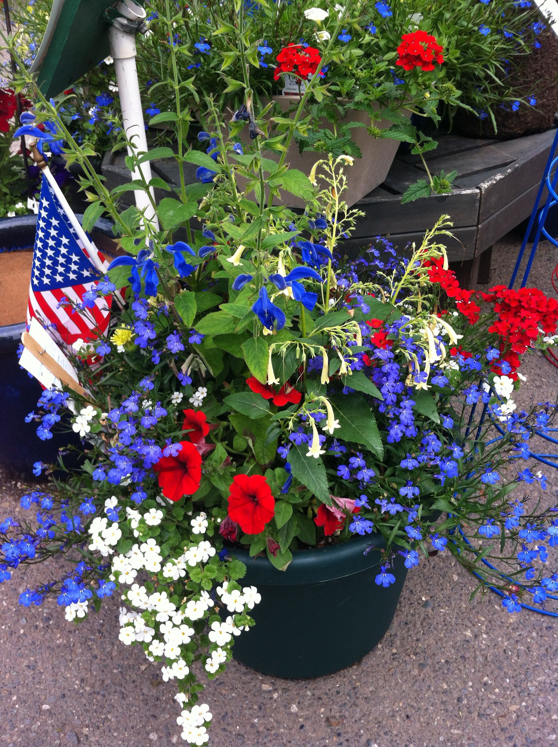 flowers 4th of july easy