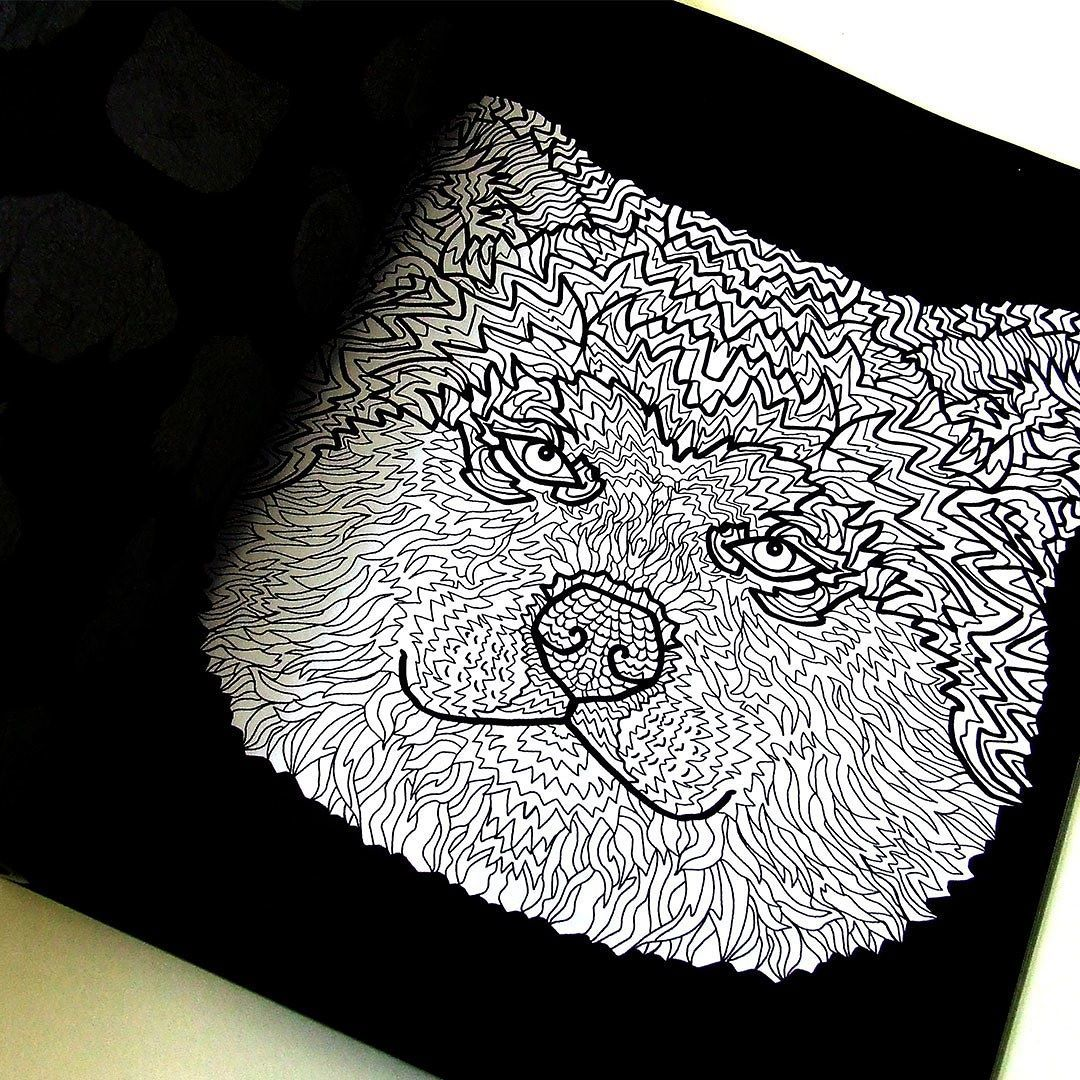 Akita Illustration From The Detailed Dogs Coloring Book Visit Complicatedcoloring